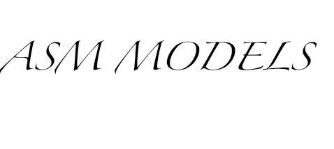asm models modellenbureau voor special en fashion modellen management casting en fotografie. Black Bedroom Furniture Sets. Home Design Ideas