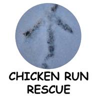 Chicken Run Rescue