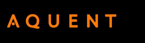 Borenstein Group: Washington DC's Expert Digital Agency